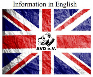 Inforamation in english AVD